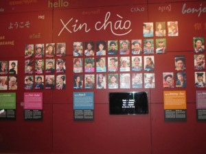 xinchao